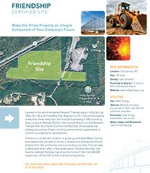 Friendship Brochure
