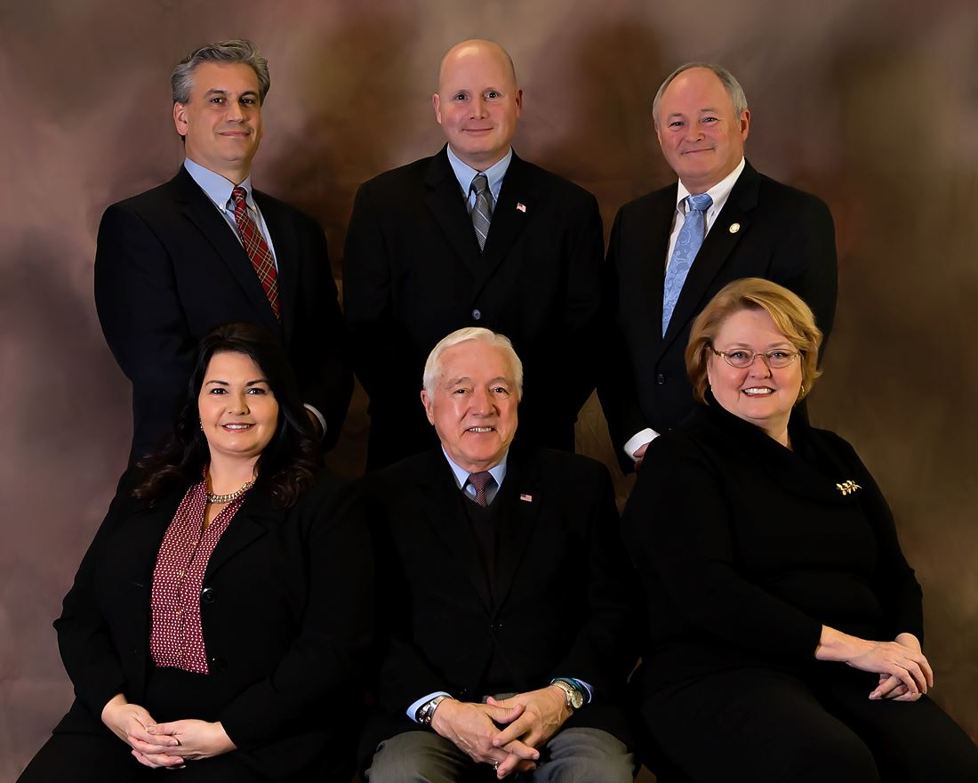 Holly Springs Town Council